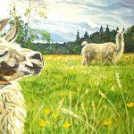 Heidi Steinman Art - Llamas